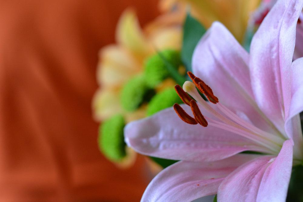 Flowers to Print-8.jpg