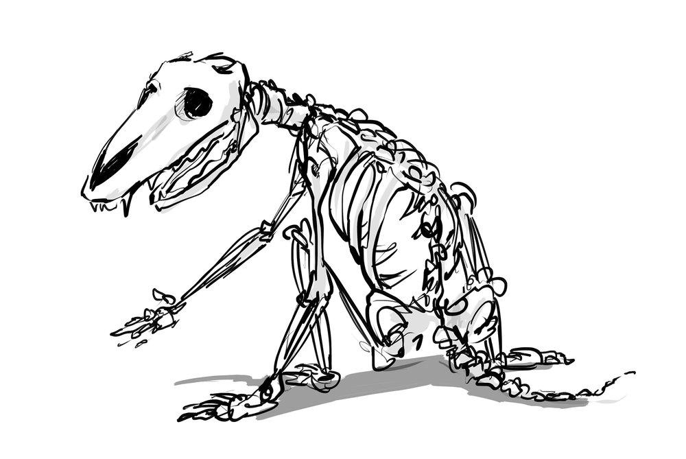 wolfskeleton.jpg