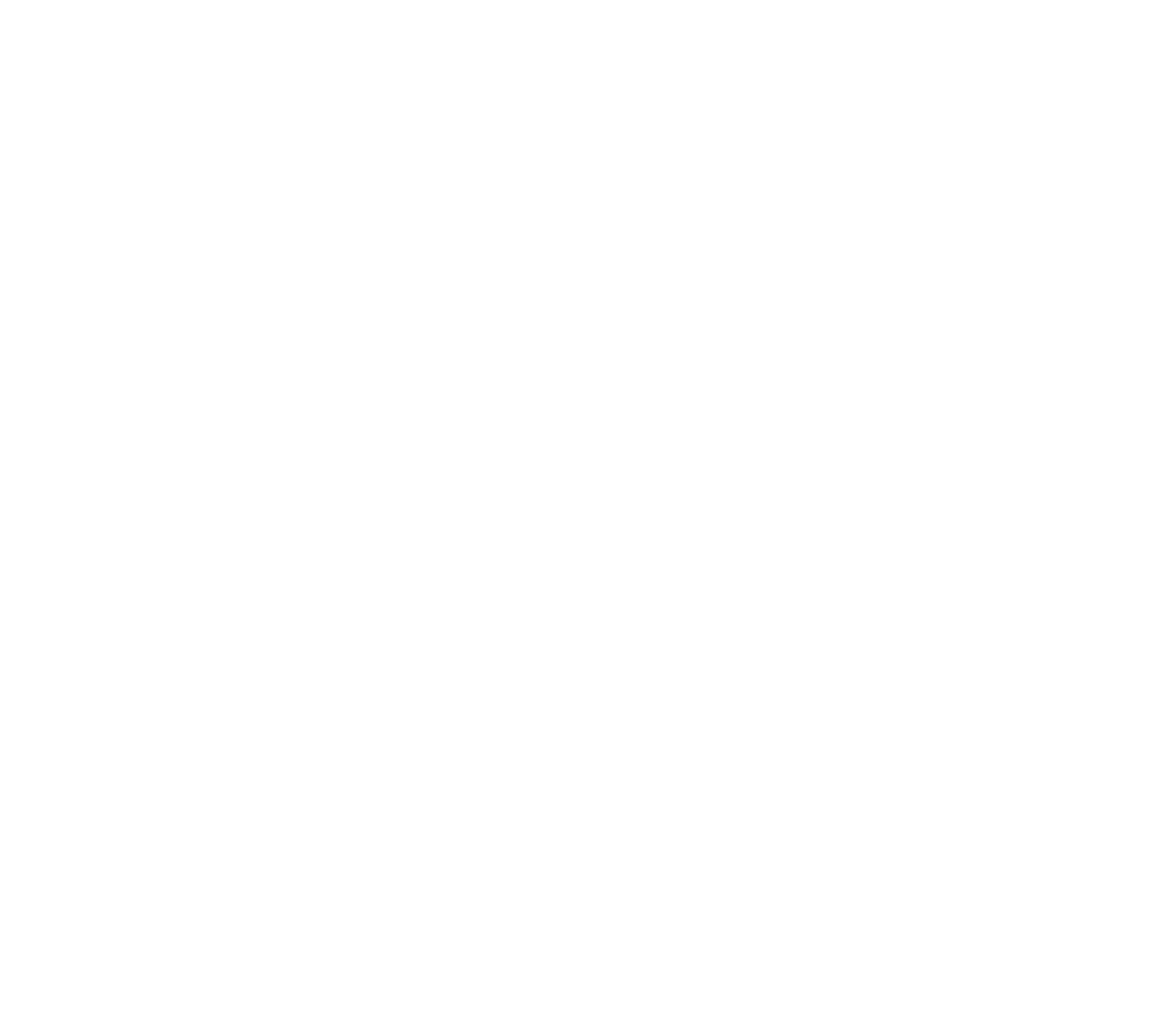 Raising Voices USA