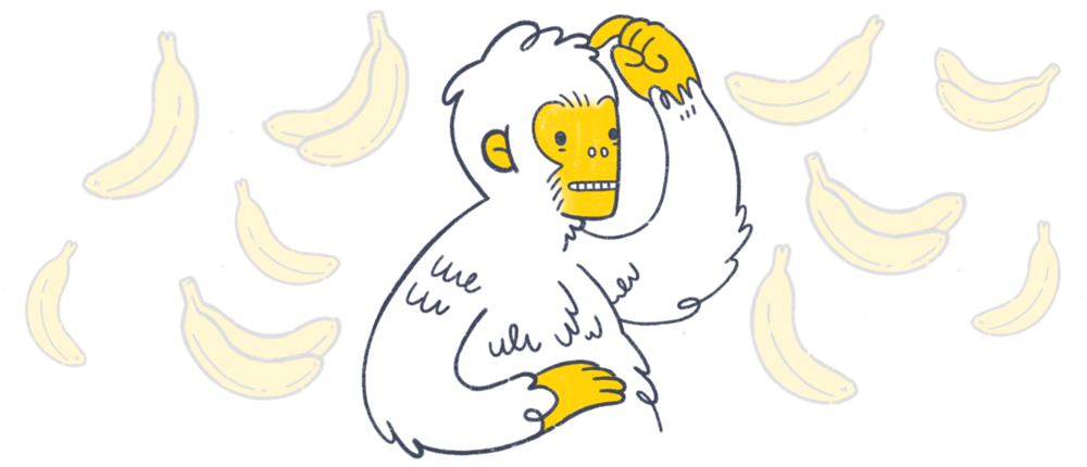 Article_1_Monkey_6.png