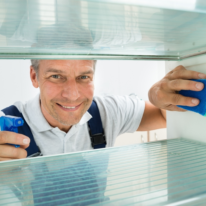 If you don't want to clean your own refrigerator, click  here .