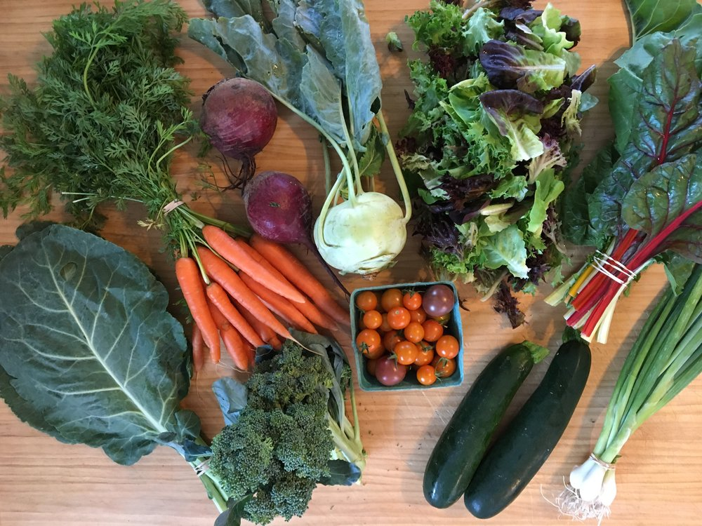 CSA Harvest - Week #9
