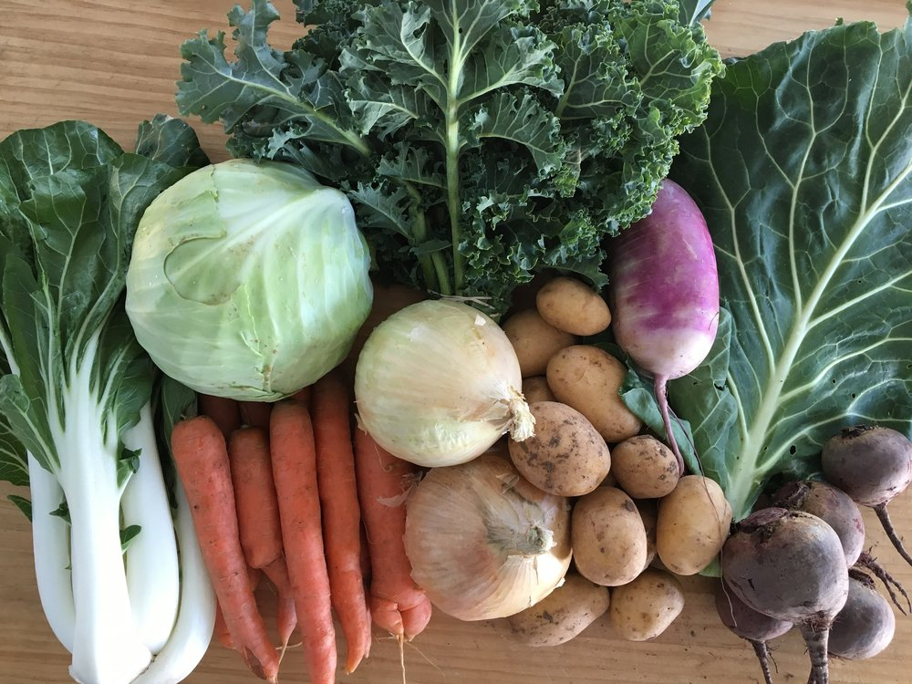 Fall CSA Harvest - Week #1