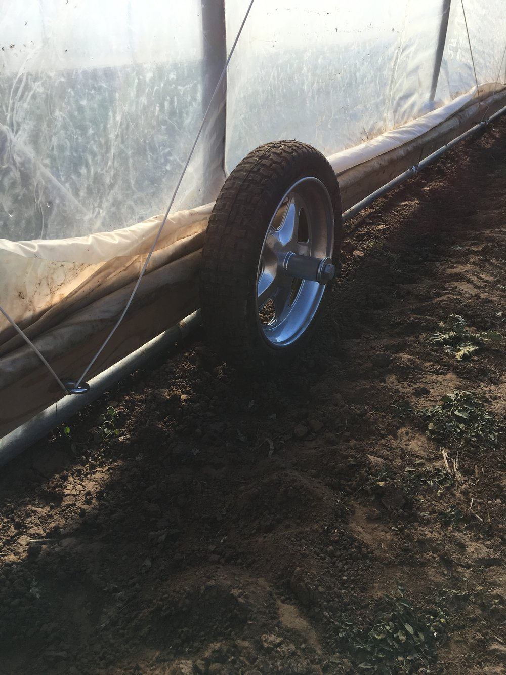 We attached wheelbarrow tires to the front end of the Moveable Greenhouses