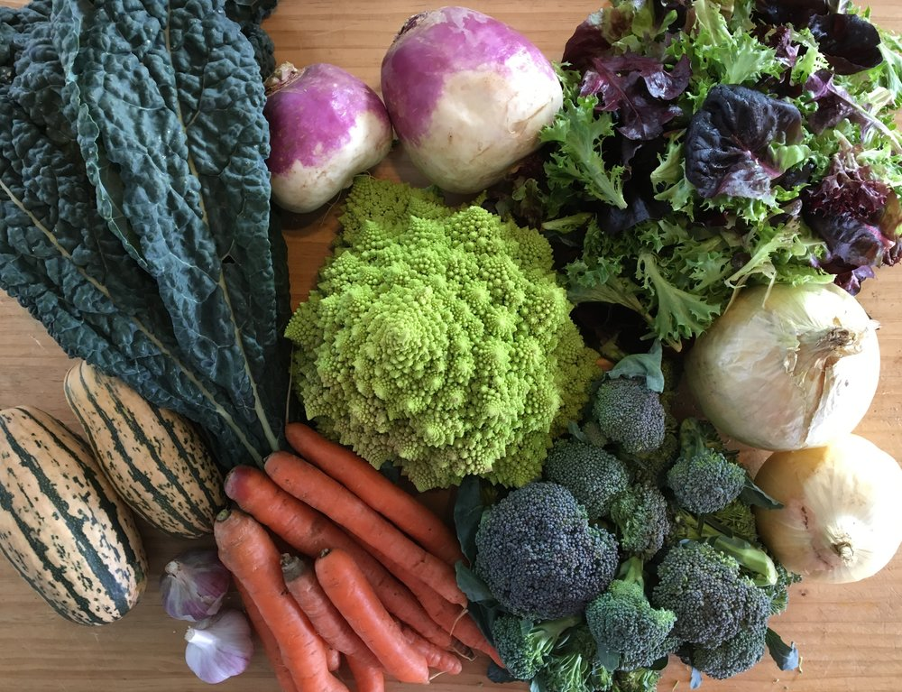 Last Week's Share - Fall CSA Week #2
