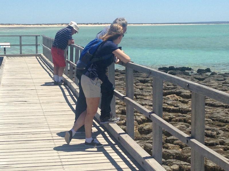 20151118141704_Stromatolites.jpg