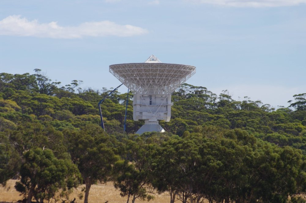ESTRACK_New_Norcia_gnangarra (Custom).jpg