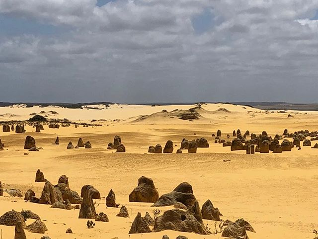 Enigmatic Pinnacles. Personalised bespoke tours. #pinnacledesert #luxuryoutbacktours #privatetous #pinnacles#cervantes