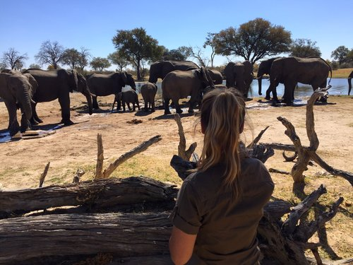 IMPACT IN ZIMBABWE    ECO EDIT  MISSION sits down with Desnee Joseph, the co-manager of Bomani tented lodge...