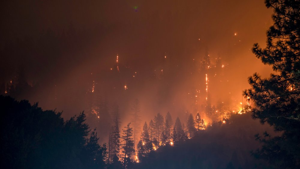 FIRED UP    INFO  One of the worst natural disasters to hit California, is climate change to blame...