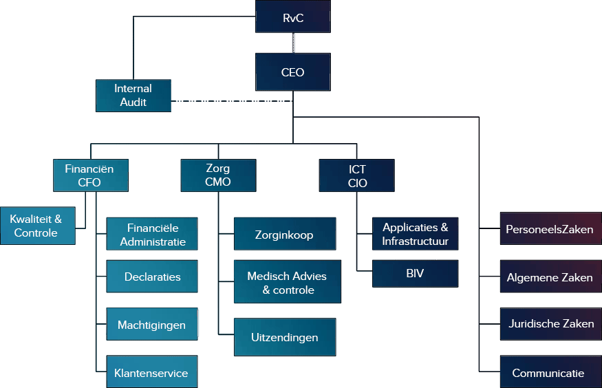 Figura 1. Organogram di AZV