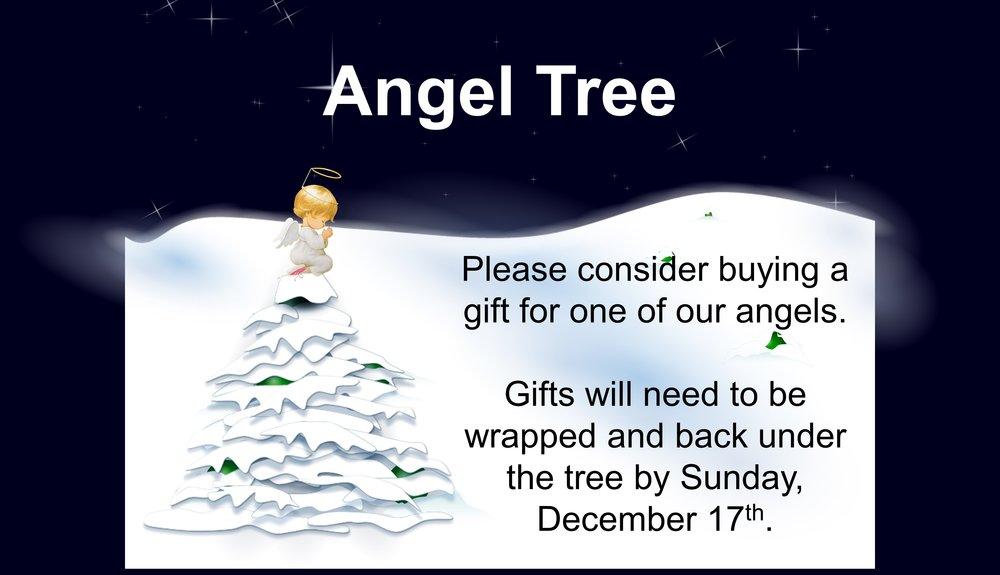 Angle Tree.JPG