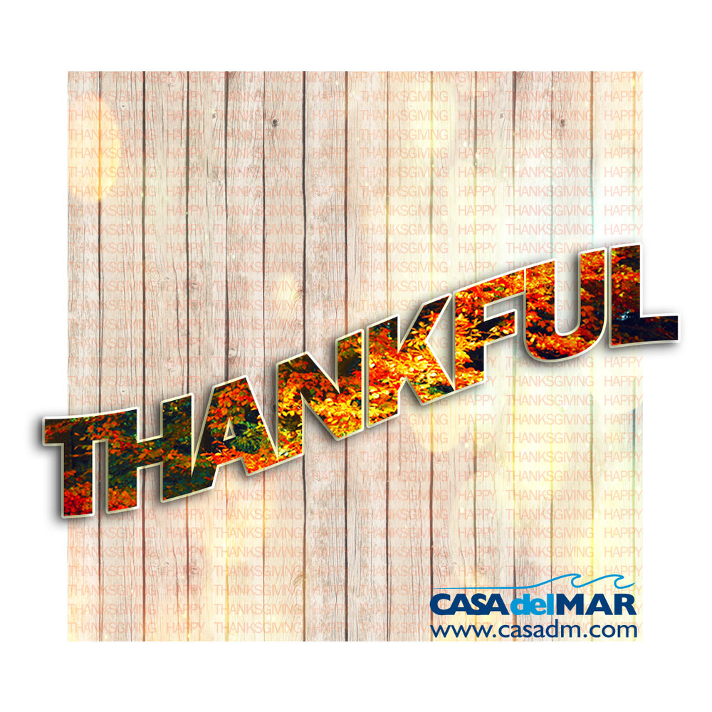 Thankful, Thanksgiving, Promotional Products, Embroidery, Screen Printing, Promotional Items, Holidays, Employee Appreciation