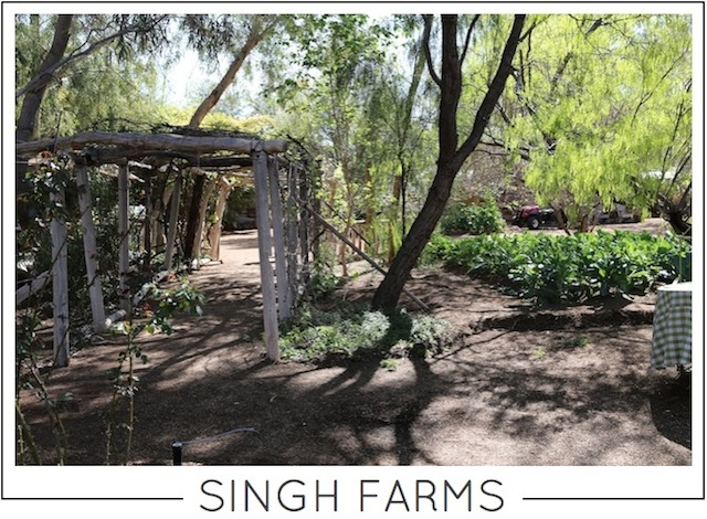 Singh Farms on Capella Kincheloe Interior Design Phoenix