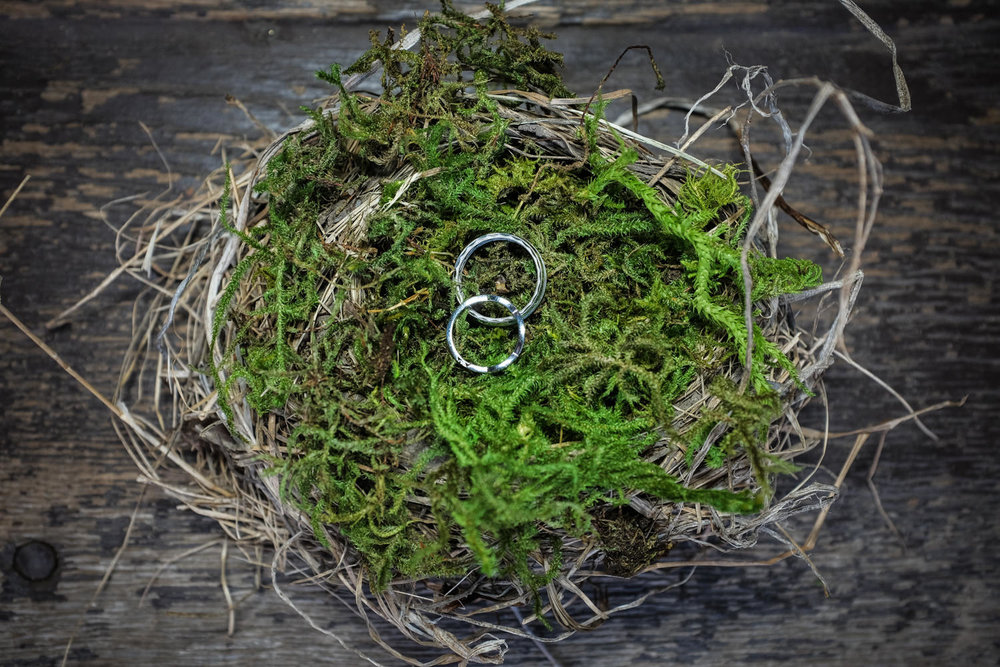 Wedding rings in a birds nest with moss, rustic Northern Wiscons