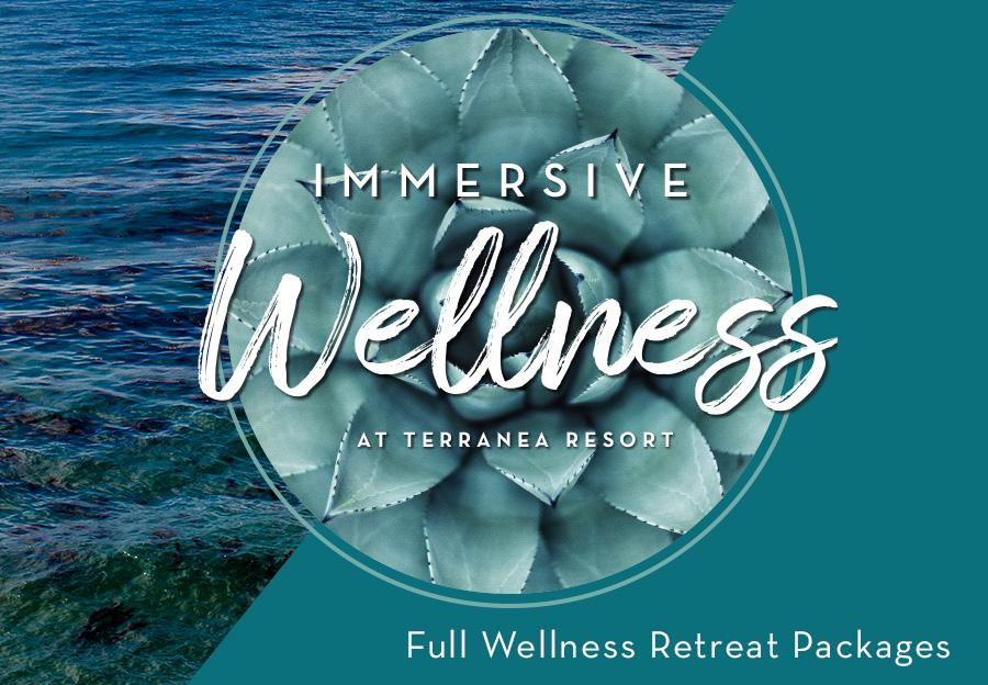 2018-ImmersiveWellness-cover-1_1024x1024.jpg