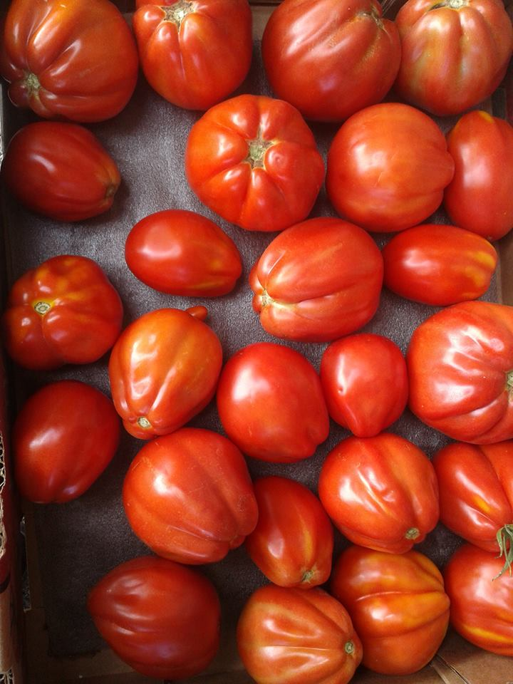 Ox Heart Tomatoes LGS .jpg