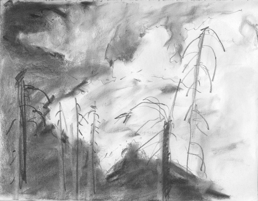 EM Gap Fire sketch 01 2016 1500x.jpg