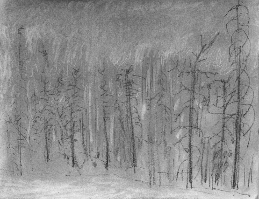 EM Gap Fire sketch 06 2016 1500x.jpg