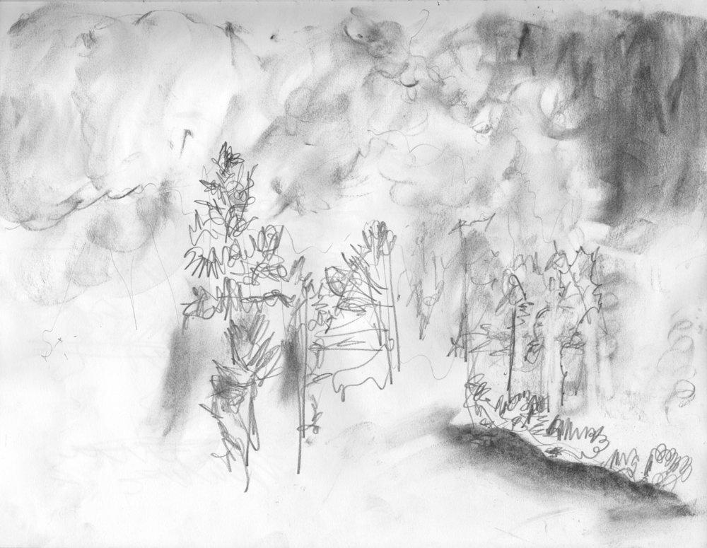 EM Gap Fire sketch 07 2016 1500x.jpg