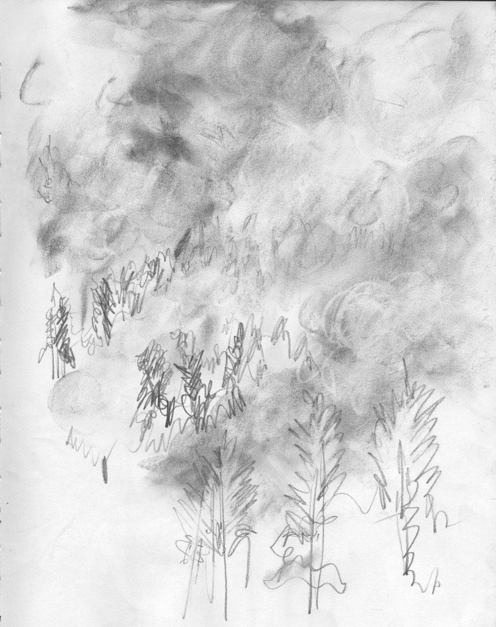 EM Gap Fire sketch 08 2016 1500x.jpg