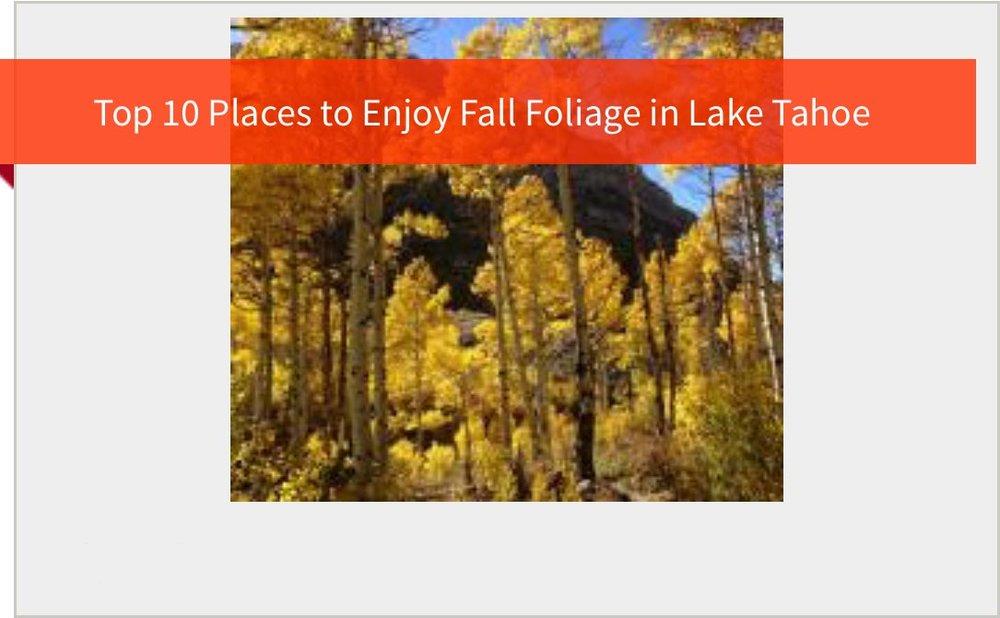 top-10-places-to-enjoy-fall-foliage.jpg