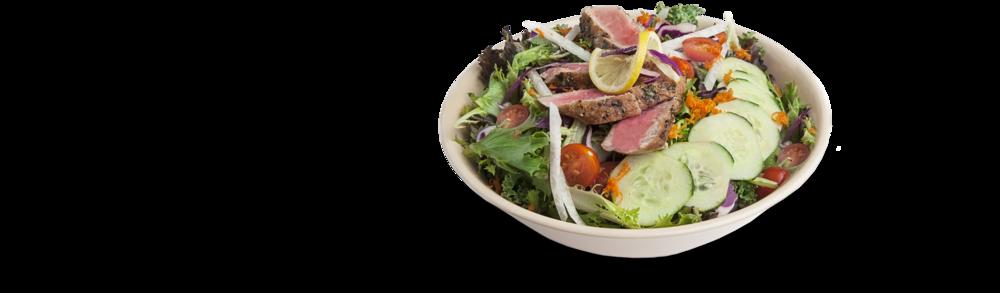 nomnomnom-tuna-salad-colorado.png