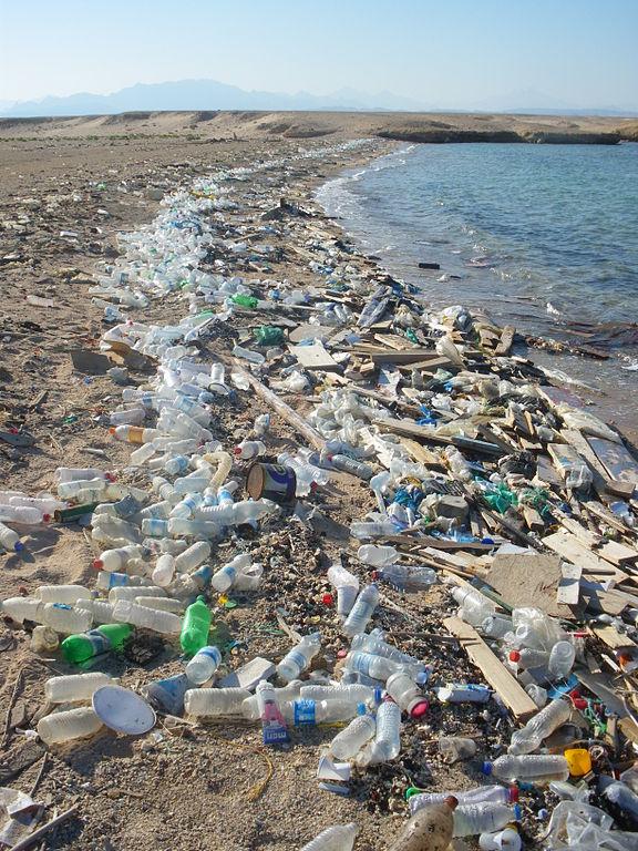 Beach-in-Sharm-al-Naga.jpg