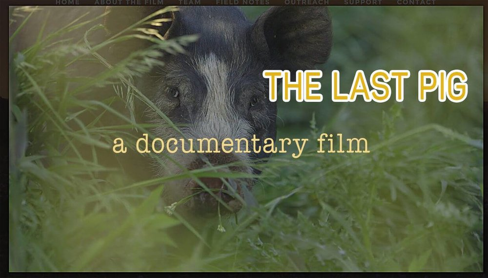 The_Last_Pig_doc.jpg