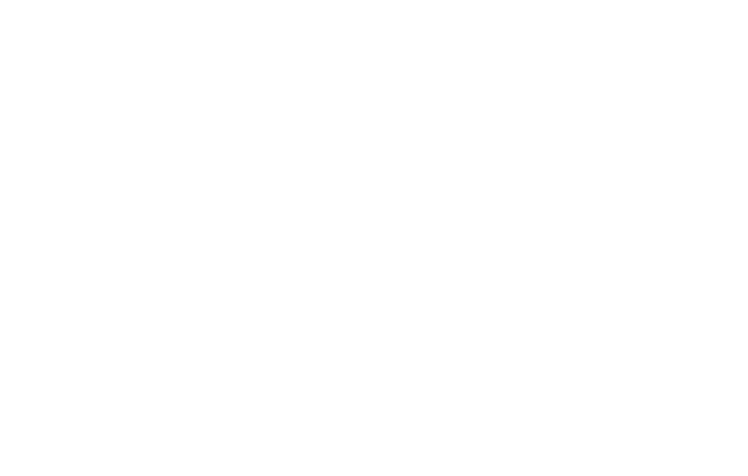 ICONIC CAPITAL GROUP