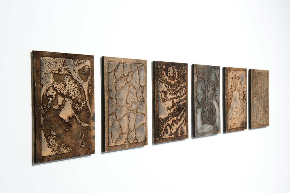 Microscopy Block Series - 2017.A collection of 410 postcards, created using imagery from mitochondrial research. Hand-printed using a woodblock technique.