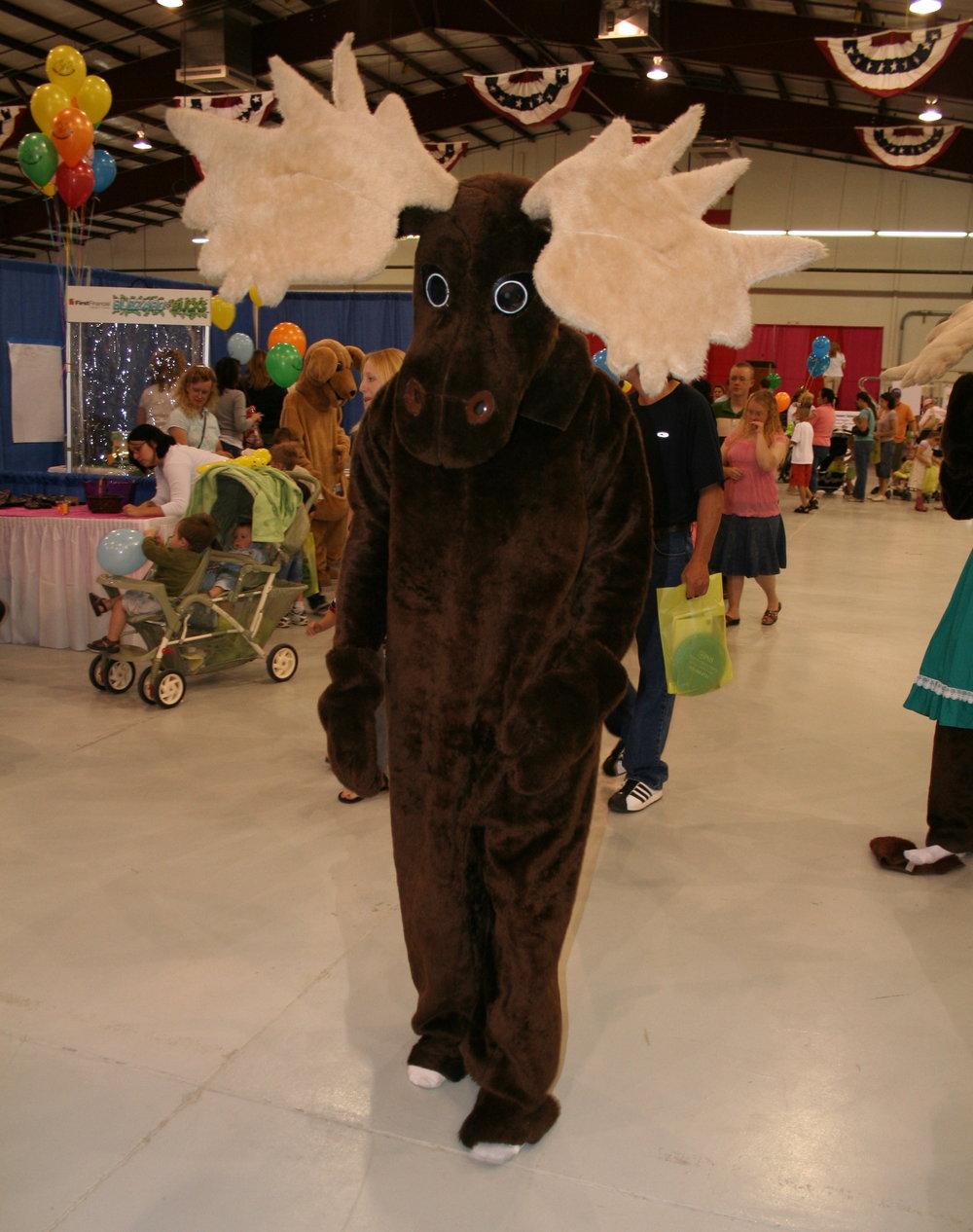 ACU moose.JPG