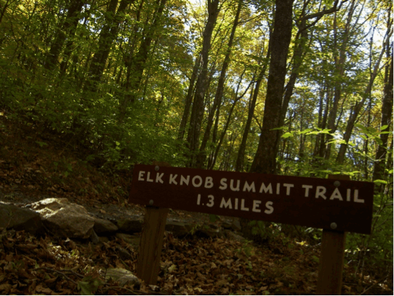 elk knob summit blue ridge conservancy