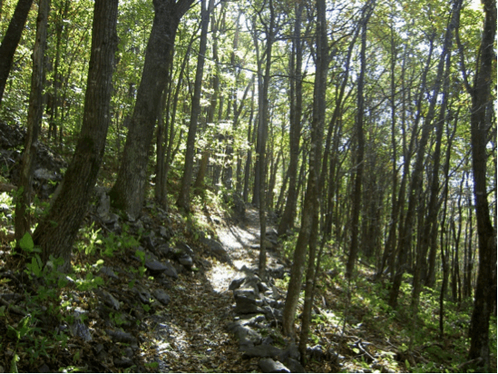blue ridge conservancy trail