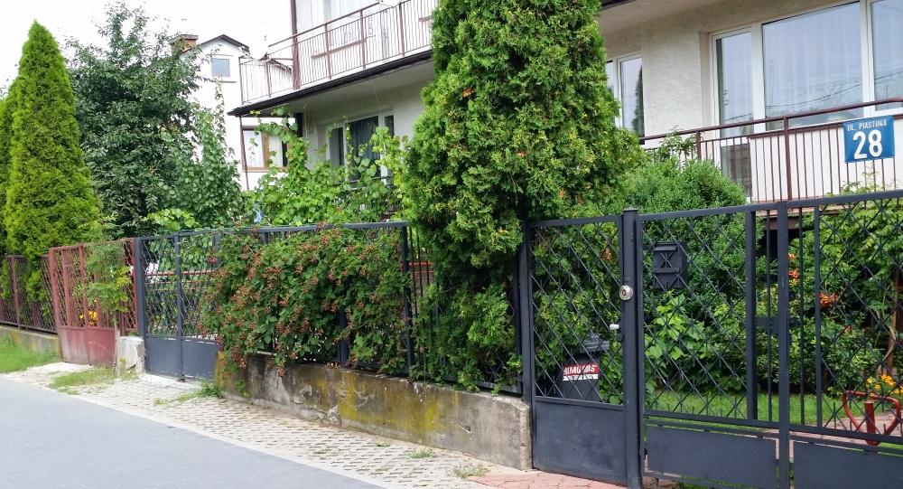 fences 1.jpg
