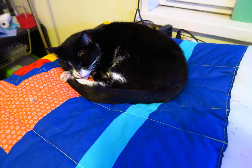 I decided that giving the cats their own quilts to sleep on helps keep them off the ones I'm trying to work on.