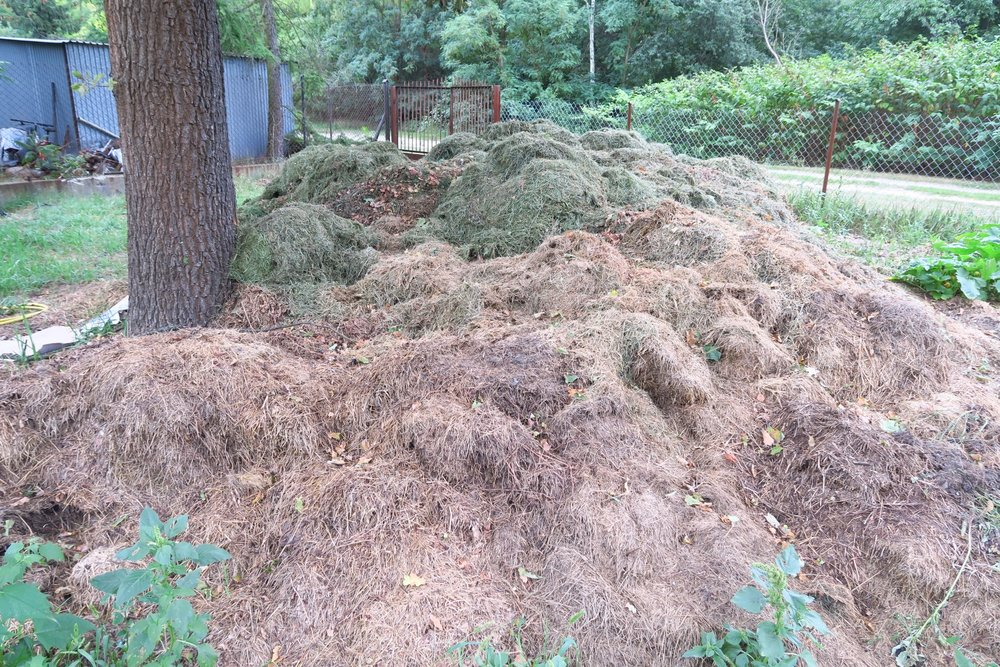 donated compost.jpg