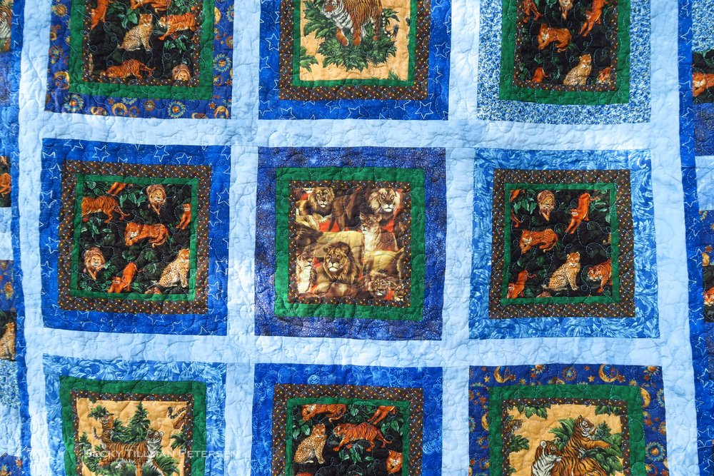 You can see that I alternated the coloration of the blocks - using some green and some brown as a very thin border around the block first. I did this to try to tie my blue into the big cat fabric, which was not even a tiny bit blue!