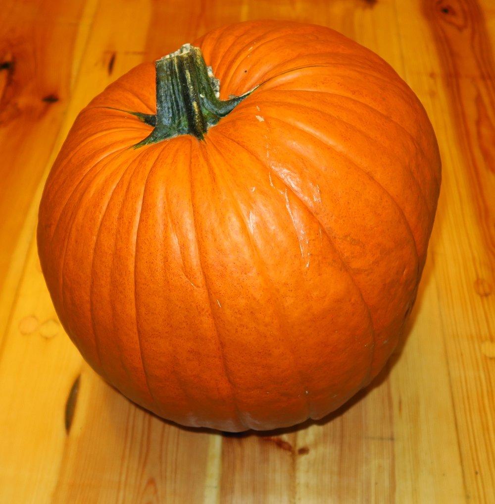 1. Bring the pumpkin in