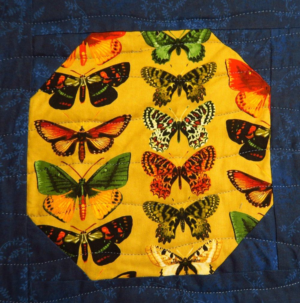Butterflies on Tan  by Kanvas
