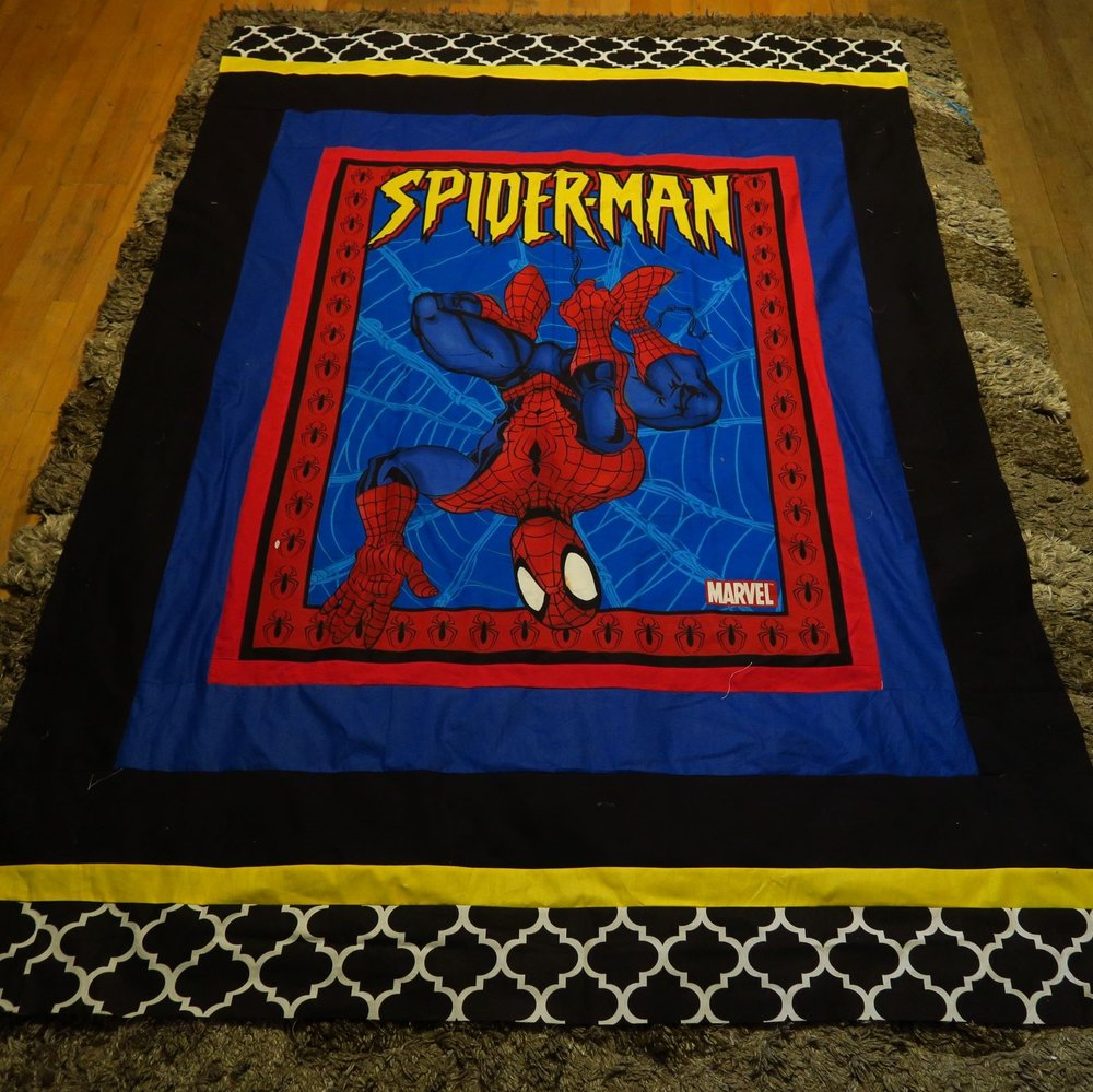 Simply Spiderman - a panel plus borders