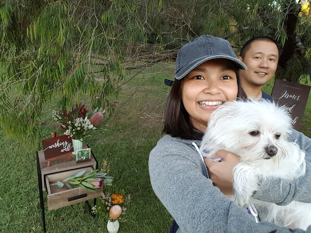 Hello from Nikki, Ryan + Pompom the evil dog x - Say hi at nikkidesignco@gmail.com