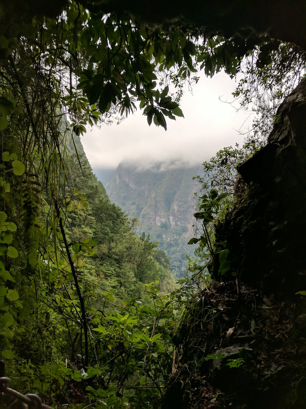 View from The Green Lagoon, a levada on the island (photograph by me)