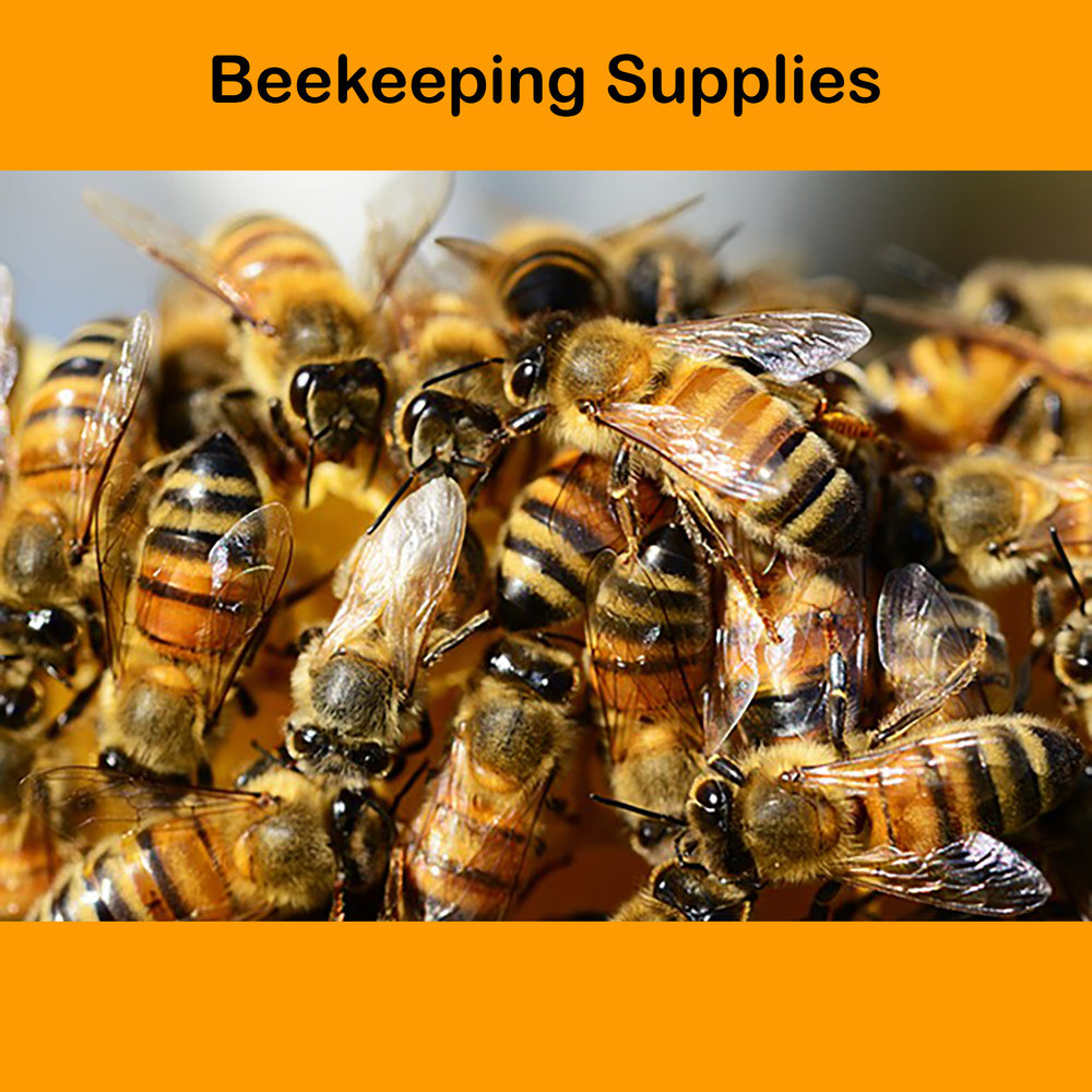 Final Web Beekeeping Supplies Honey.jpg