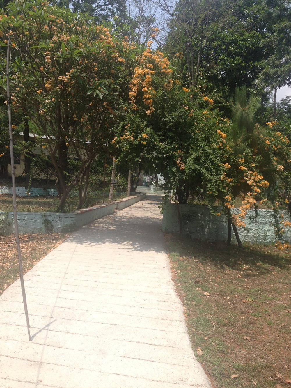 Path to the meditation hall.