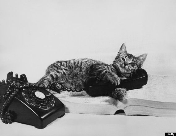20c16ee8421c3c2191821530f4ac8bc9--on-the-phone-vintage-images.jpg