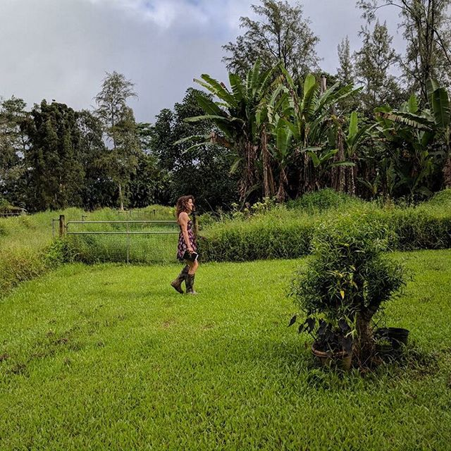 Love me some manual labor. 💪🏽🌿Also, there are banana trees 🍌 , avocado tree 🥑 , lemon tree 🍋 , and tangerine tree🍊in that field that were slowly becoming inaccessible, which was a damn shame 🤣#workislovemadevisible #workhardplayhard #weekendproject #smallkineprogress #progressisprogress #willworkforaccesstofruit