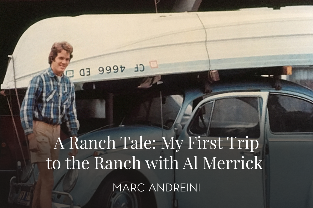 Marc Andreini loaded up on Bill Barnfield's VW Bug, ready to hit the Ranch. Photo by Bill Barnfield