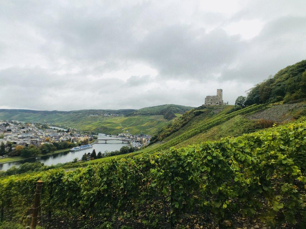 Die Burg Landshut von Süden aus gesehen.