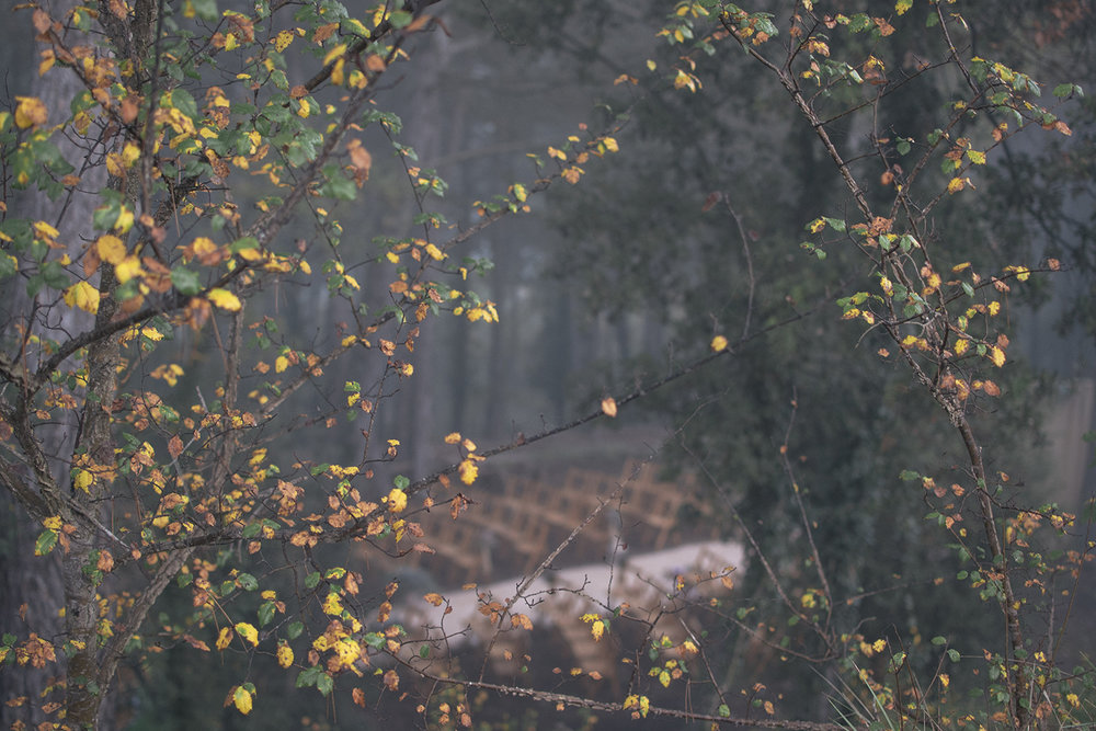 15-11-08_MasiaLaGarriga_PortesObertes8Nov15_4.jpg